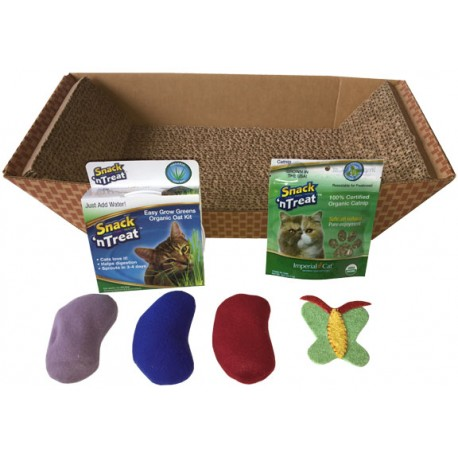2-in-1 cat scratcher bed combo filled with kitty favorites!