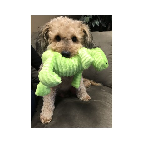 Plush Dog Toy With Squeaker!