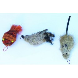 3 Pack Cat Lure Wand Refills