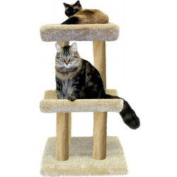 Ray's Perch Cat Tree