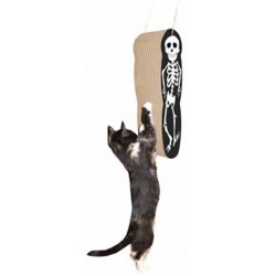 This kitty is afraid of the spooky skeleton!