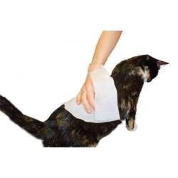 Petkin Kitty Wipes