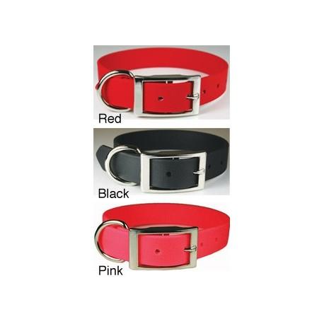 Zeta Regular Style Collar
