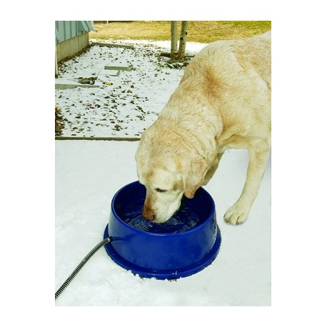 Thermal bowl keeps ice from forming in your pet's water bowl!