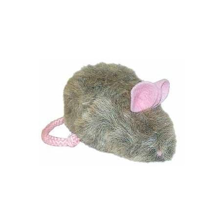 Dogs love the catnip free Rowdy Rat!