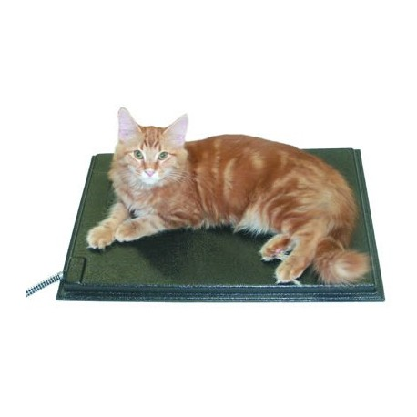 Surprising Heated Cat Bed For Outdoor Use Download Free Architecture Designs Rallybritishbridgeorg