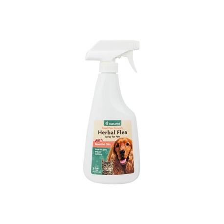 Herbal Flea Spray