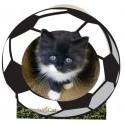 Imperial Cat Soccer Ball Scratch 'n Shape