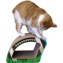 Imperial Cat Football Scratch 'n Shape