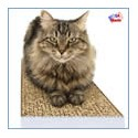 USA Standard Cat Scratchers