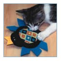 Creepy Crawly Catnip Toys