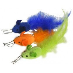 Three colorful, catnip-filled mousebirds!